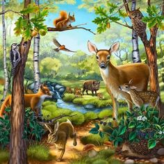 Forest animal puzzle illustration by anne wertheim directory. Animals And Pets, Funny Animals, Cute Animals, Paradise Pictures, Foto Gif, Animal Puzzle, Animal Habitats, Animal Posters, Forest Animals