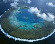 Lady Musgrave Island- Great Barrier Reef, Australia