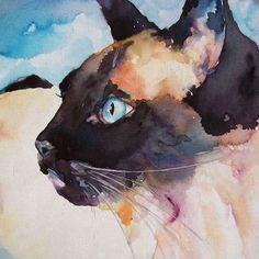 kedibiyigi