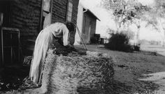 1920 Edward H. Davis photograph of an Akimel O'odham (Pima) woman, possibly named Elena Juan, making a large granary basket of arrowweed. Native American Tribes, Native Americans, American Indians, Indian Village, Cultural Diversity, San Diego, Survival, Photograph, Around The Worlds