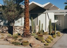 8-Mid-Century-Houses-in-Palm-Springs-That-Will-Make-You-Dream_12 8-Mid-Century-Houses-in-Palm-Springs-That-Will-Make-You-Dream_12