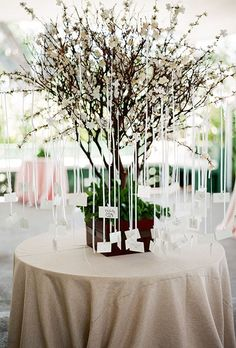 Tree Branches Wedding Seating Chart and Escort Card Display   Brides.com