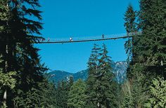 Terrys Travel: Capilano Suspension Bridge, Vancouver
