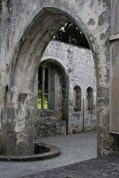 ✯ Muckross Abbey - Killarney, Ireland