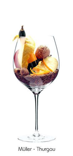 Müller-Thurgau: Apple, Walnut, lemon zest, orange zest, almond, pumpkin, caraway seeds, coriander