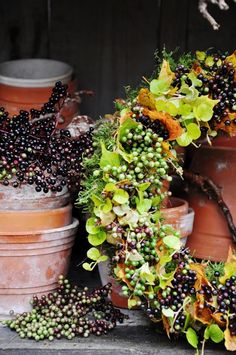 I love this! Looks like viburnam berries. You could use rose hips too.  Fall Berry Wreath