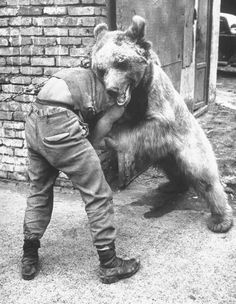 Ok, so the story goes: My Great Grandpa Robert Hazard had a bear He played with him and the bear  never hurt him. People would pay money to see a man wrestle a bear. So, this is what he would do to make a little money aside from owning the bicycle shop in Santa Barbara. I don't know if this is him, but it reminded me of the story...