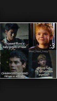 Minho: Ho trovato una vecchia foto di Newt.    Thomas: Aww, era così adorabile!    Newt: Maledizione, non sono più adorabile?!    <3