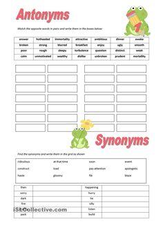 Antonyms & Synonyms