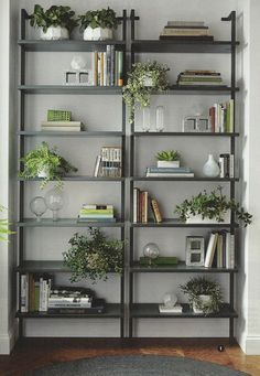 Industrial bookcases with plants