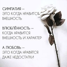 Со смыслом The Words, Cool Words, Poem Quotes, True Quotes, Teen Dictionary, Gemini And Aquarius, Russian Quotes, Cute Couple Quotes, Reading Quotes
