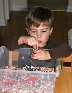 Bean-filled sensory bin