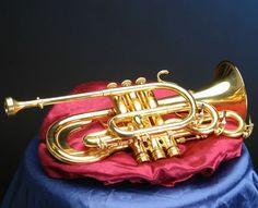 Pocket Trumpet, Brass Instrument, Trumpet Players, Music Rooms, Brass Band, Trombone, Instrumental, Musical Instruments, Horns
