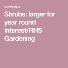 Shrubs: larger for year round interest/RHS Gardening