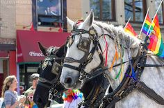 Northampton #Pride Parade.