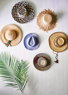 chic summer sun hats!