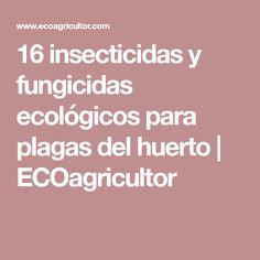 16 insecticidas y fungicidas ecológicos para plagas del huerto | ECOagricultor Growing Seeds, Edible Garden, Gardens, Growing Plants, Natural Bug Killer, Woodlice, Hacks, Restaurants, Health