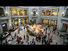 Why Is Climate Denier David Koch on the Board of Top Science Museums? Le...