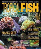 The March issue of TFH is out, featuring articles on stocking a nano reef tank, aquascaping with carnivorous plants, adding a rainbow of color to your freshwater tank, and much more! http://www.tfhmagazine.com/buy-this-issue.htm