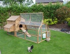 I know this is supposed to be for chickens or small dogs or something...but I kinda wanna make something like this for the kids!