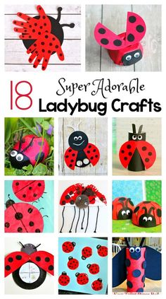 18 Adorable Ladybug Crafts for Kids including ladybugs made from egg cartons toilet paper rolls cupcake liners paper plates and more! Perfect for an insect gardening or bug unit or for spring and summer! Summer Crafts For Kids, Art For Kids, Summer Kids, Summer Art, Baby Crafts, Toddler Crafts, Preschool Crafts, Kids Crafts, Preschool Garden