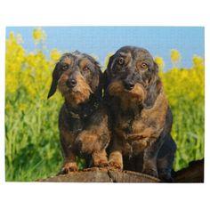 #cute - #Two Cute Dachshunds Dogs Dackel Friends Pet Photo Jigsaw Puzzle