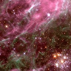 An archive picture of the Tarantula Nebula as seen by the Hubble telescope