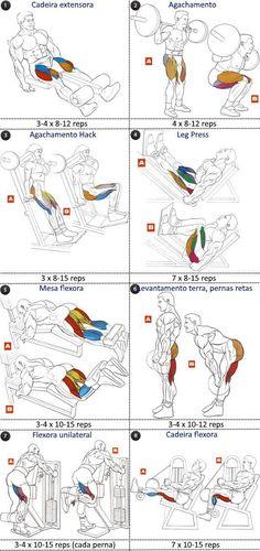 FST-7 programa treino pernas (quadríceps e isquiotibiais)