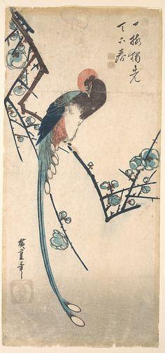 Long Tailed Bird Utagawa Hiroshige (Japanese, Tokyo (Edo) 1797–1858 Tokyo (Edo))
