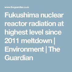 Fukushima nuclear re