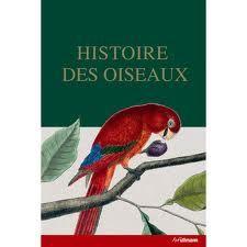 histoire des oiseaux - Recherche Google