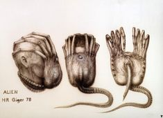 Concept Art for the Facehugger in Alien Have you hugged any faces today? The facehugger, one of the greatest concepts from Alien (I'm not even sure if John Hurt's War Doctor could have defeated this. Hr Giger, Giger Alien, Giger Art, Alien 1979, Arte Alien, Alien Art, Mark Riddick, Bad Things, Scary Things