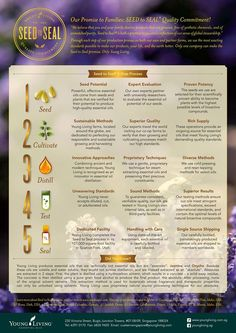 Young Living Essential Oils: Seed to Seal. THE reason I chose Young Living over other brands. Young Living Oils, Young Living Essential Oils, Young Living Business Cards, Yl Oils, Essential Oil Uses, Party Signs, Health And Wellbeing, Healthy Life, Essentials