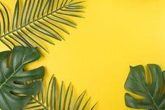Nature leaf tropical Vectors, Photos and PSD files Wallpaper Notebook, Wallpaper Pc, Computer Wallpaper, Beach Background, Yellow Background, Background Patterns, Plant Wallpaper, Aesthetic Desktop Wallpaper, Tropical Plants