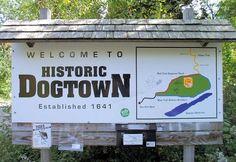 dogtown1
