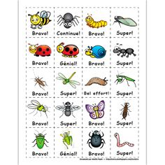 Mérites, bestioles et insectes French Teaching Resources, Teaching French, Amelie Pepin, Foreign Language Teaching, Core French, Petite Section, French Immersion, School Motivation, Animals
