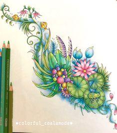 . ふしぎな王国(Magical Jungle)より。 . 以前からちょこっとずつ塗っていたこちらを仕上げました。 蓮の葉の塗り方や、水面の塗り方等など、 YouTuberのChris Cheng さん(@colorvscolour)の動画を参考に、プリズマカラーのみを使用して塗りました✨ (丸の部分を泡っぽく塗るのは、憧れたのですが画材と力量が足りず断念😢) . Chrisさんの塗り絵、本当にすごい…! 体調がなかなか回復せず起き上がれない際に、Chrisさんの動画が癒しでした。また選曲も素敵なんですよね…✨ . 自分では思いつかないような色使いや塗り方や、いつも決まった色ばかり使っていてなかなか活躍する機会がなかった色鉛筆を使用できてとっても楽しかったです✨ . #ふしぎな王国 #MagicalJungle #ジョハンナバスフォード #johannabasford #コロリアージュ #大人の塗り絵 #coloriage #coloringbook #プリズマカラー #prismacolor #色鉛筆 #coloredpencil #塗り絵記録 Love Wallpaper, Color Combos, Watercolor Tattoo, Leaves, Wallpapers, Crafts, Colouring In, Pintura, Manualidades