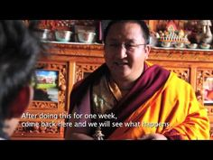 """""""THE POND"""" is a five minutes documentary, It is all about journey, environment, entertainment, education and mostly emphasizing the ultimate happiness comes . Dharamsala, Tibetan Buddhism, My Dear Friend, Dalai Lama, Documentary, Film Festival, Appreciation, India, Culture"""