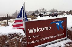 The Oregon militia asked supporters for survival supplies — and instead they got dildos, lots of them - Salon.com