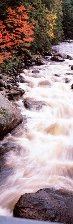 Ausable River (Adirondacks, NY) by Panoramic Images