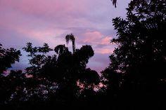 Breathaking Scenery in Sri Lanka