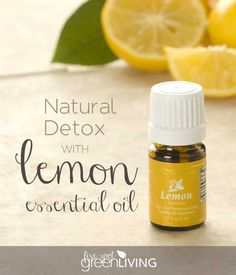 Easy Natural Detox with Lemon Essential Oil. Brighten your skin, get rid of headaches, indigestion and bloating by cleansing your liver! FiveSpotGreenLiving.com #livesimplynaturally