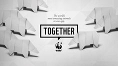 #WWF #Together #Origami #Art
