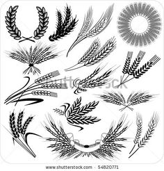 Tattoos: Creative wheat ears & laurel wreath & wheat sheafs | TattooVectors.com