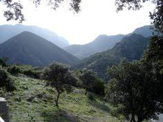 Sierra de Grazalema (Cádiz)  http://bovington-posts.blogspot.com.es/2011/11/sierra-de-grazalema.html