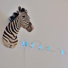 Zebra (Fibonacci) - Mario Merz | Flickr - Photo Sharing! Robert Morris, Giuseppe Penone, Modern Art, Contemporary Art, Richard Serra, Live Animals, Italian Art, Conceptual Art, Zebras
