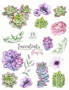 Discover recipes, home ideas, style inspiration and other ideas to try. Succulents Drawing, Watercolor Succulents, Watercolor Flowers, Watercolor Art, Succulents Art, Watercolor Wedding, Succulent Tattoo, Wedding Clip, Watercolor Painting Techniques