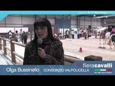 Intervista ad Olga Bussinello di Consorzio Valpolicella #fieracavalli
