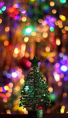 Tiny little Christmas tree :) Christmas Time Is Here, Merry Little Christmas, Noel Christmas, Christmas Music, Christmas Colors, All Things Christmas, Winter Christmas, Winter Things, Southern Christmas