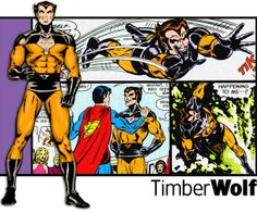 Years before Wolverine there was a DC character from the Legion of Superheroes called 'Timberwolf'.  Notice any similarities?  Art by Dave Cockrum, later became the artist of the New X-men creating a good part of the look of Wolverine as Logan.